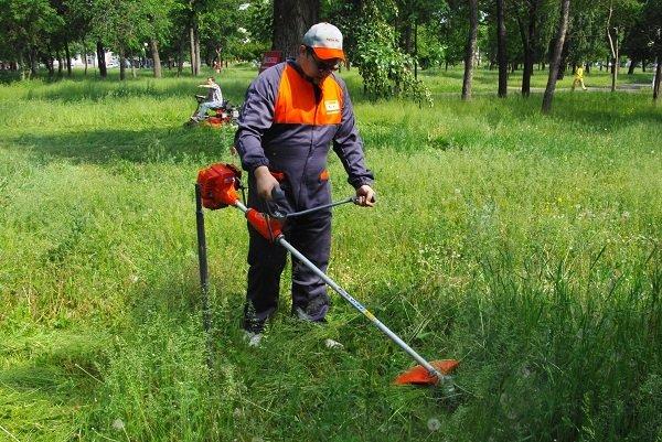 Екатерининская улица закон о скашивании травы на участке Стрелец